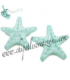 Perla Stella Marina Resina 31x33 mm color Turchese Effetto Ghiaccio
