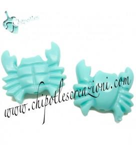 Perla Granchio Resina 27x29 mm colore Turchese