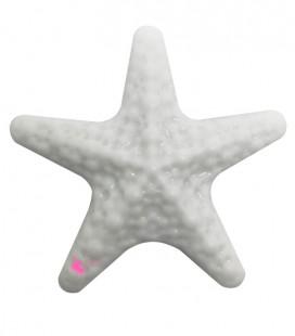 Perla Stella Marina Grande Resina 50x52 mm colore Bianco